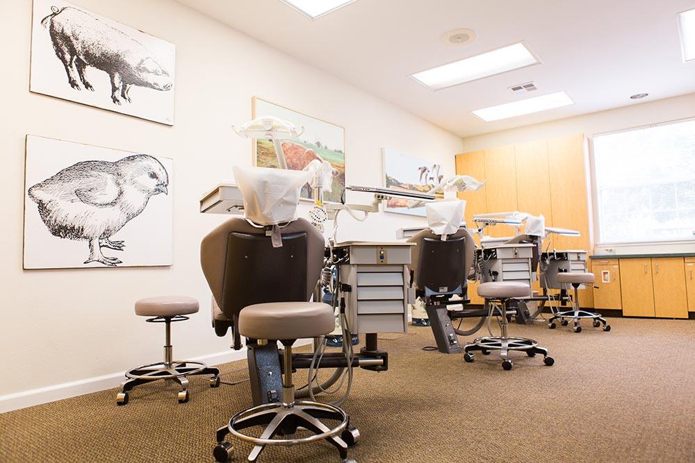office tour | bales orthodontics | santa rosa and novato ca